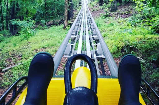 Narcity: This North Georgia Self-Controlled Coaster Will Take You On An Insane Ride Through The Mountains